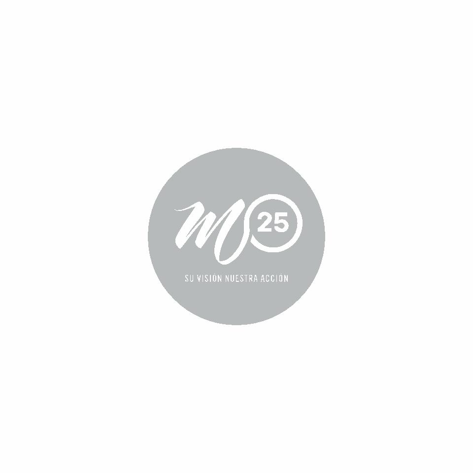 Proyecto M25